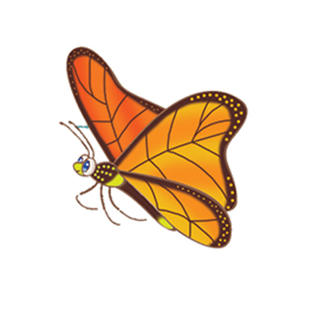 King The Butterfly