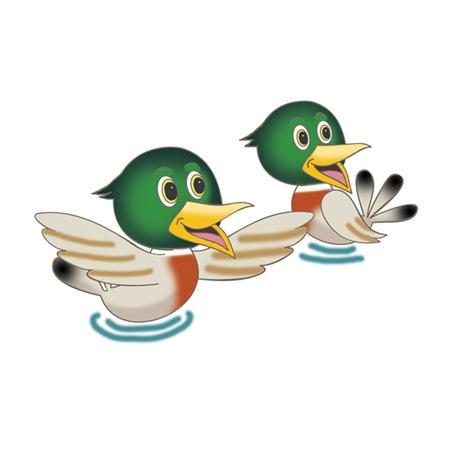 Hal and Sal The Ducks